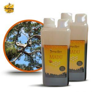 madu hutan murni tanpa tambahan bahan apapun, dari hasil panen tanpa diproses apapun. madu hutan merupakan madu yang dihasilkan oleh lebah apis dorsata
