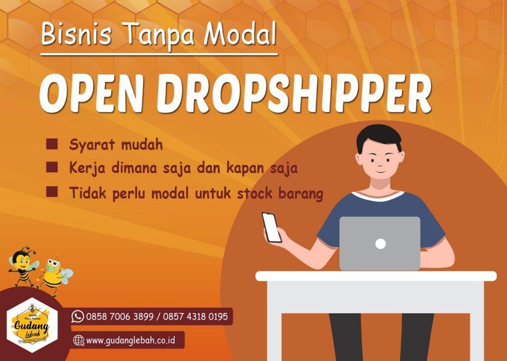 peluang bisnis dropship merupakan teknik pemasaran dimana penjual tidak perlu menyimpan stok barang anda cukup mengurus marketing saja