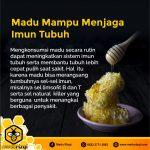 Jual Madu Asli Jakarta